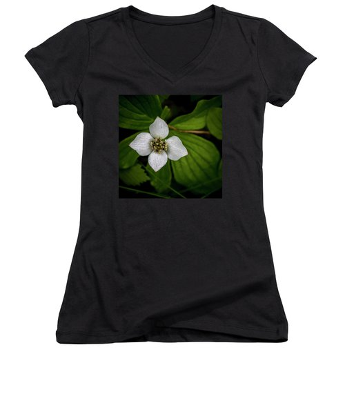 Women's V-Neck T-Shirt (Junior Cut) featuring the photograph Bunchberry Dogwood On Gloomy Day by Darcy Michaelchuk
