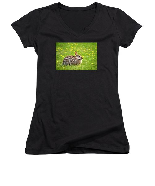 Bunny Rabbit Women's V-Neck T-Shirt