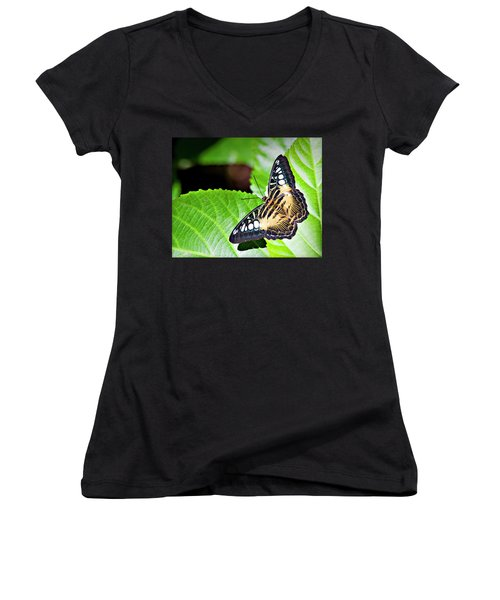 Butterfly 13a Women's V-Neck (Athletic Fit)