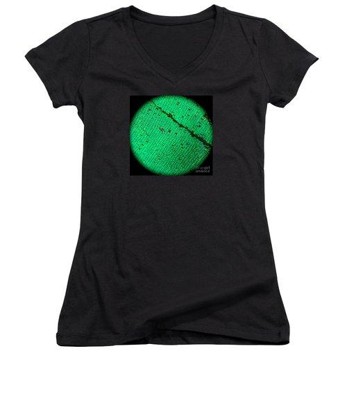 Butterfly Armor Women's V-Neck T-Shirt (Junior Cut) by KD Johnson