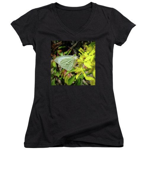 Butterfly Feasting On Yellow Flowers Women's V-Neck