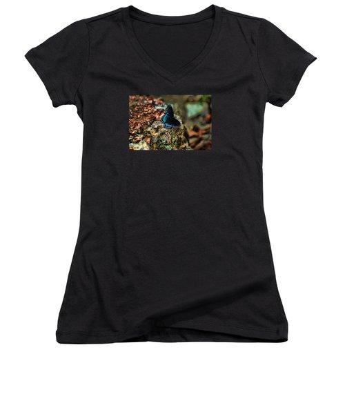 Butterfly Rock Women's V-Neck T-Shirt