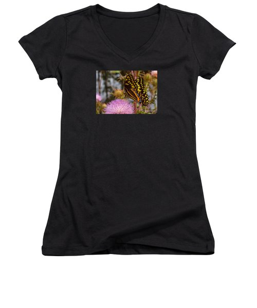 Butterfly Visit Women's V-Neck T-Shirt