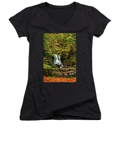 By The Side Of The Road Women's V-Neck