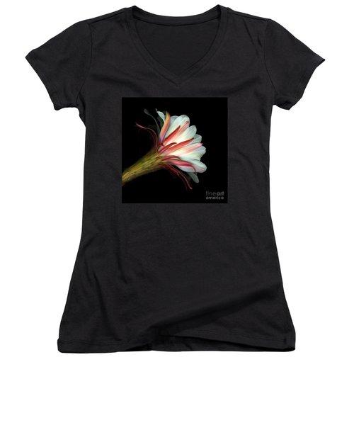 Cactus Flower Women's V-Neck T-Shirt (Junior Cut) by Christian Slanec