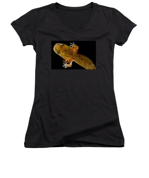 California Giant Salamander Larva Women's V-Neck T-Shirt