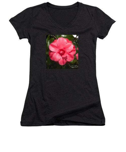 Camellia Japonica ' Mathotiana Rosea' Women's V-Neck
