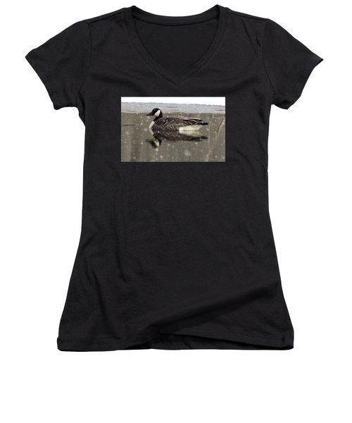 Canadian Goose In Michigan Women's V-Neck (Athletic Fit)