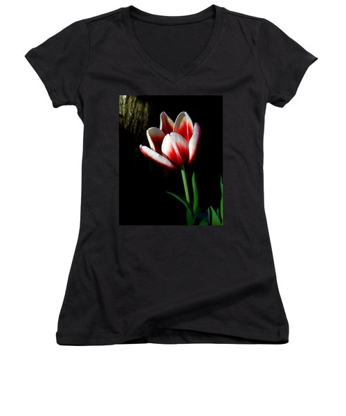 Candy Cane Tulip Women's V-Neck (Athletic Fit)