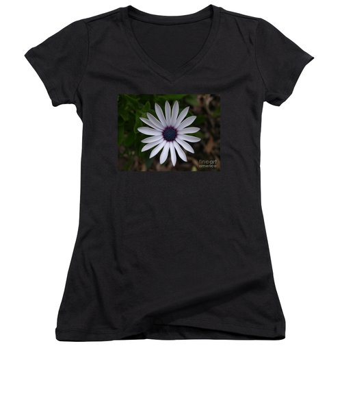 Cape Daisy Women's V-Neck T-Shirt