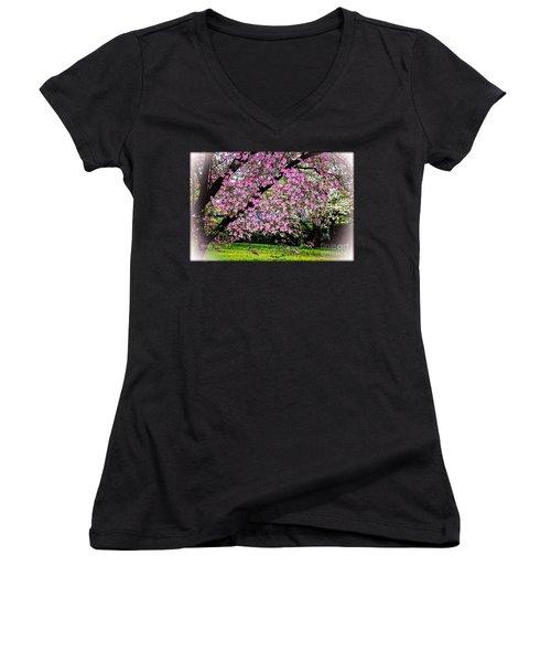 Cascading Dogwood Copyright Mary Lee Parker 17, Women's V-Neck T-Shirt
