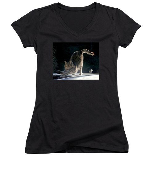 Women's V-Neck T-Shirt (Junior Cut) featuring the photograph Cat Yoga by Peter Mooyman