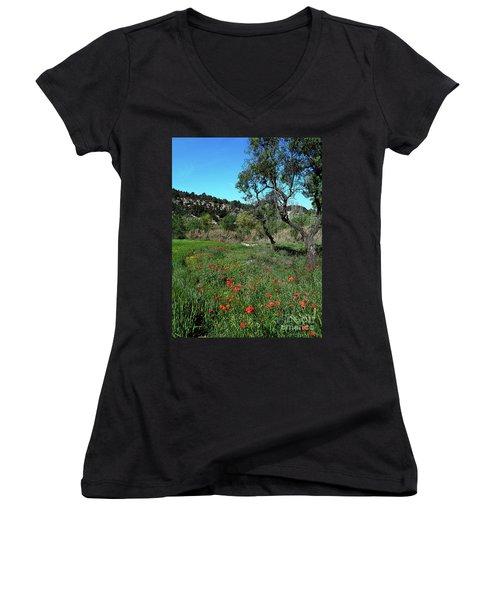 Catalan Countryside In Spring Women's V-Neck T-Shirt (Junior Cut) by Don Pedro De Gracia
