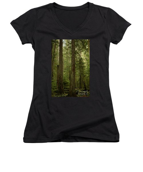 Cathedral Grove Women's V-Neck (Athletic Fit)