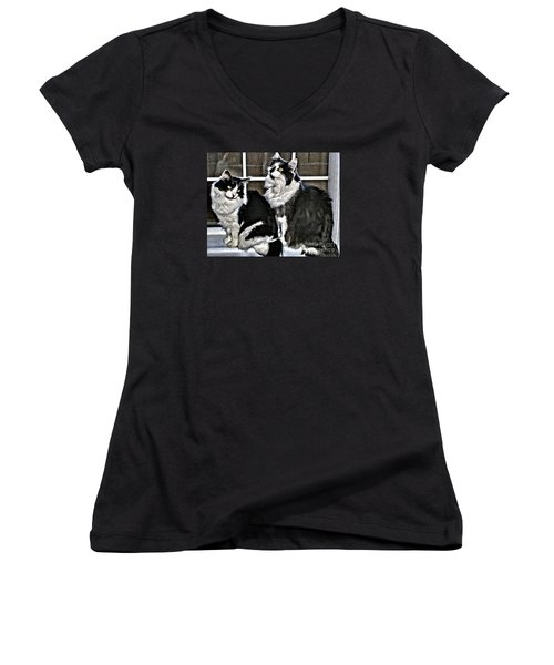 Cats In The Window Women's V-Neck