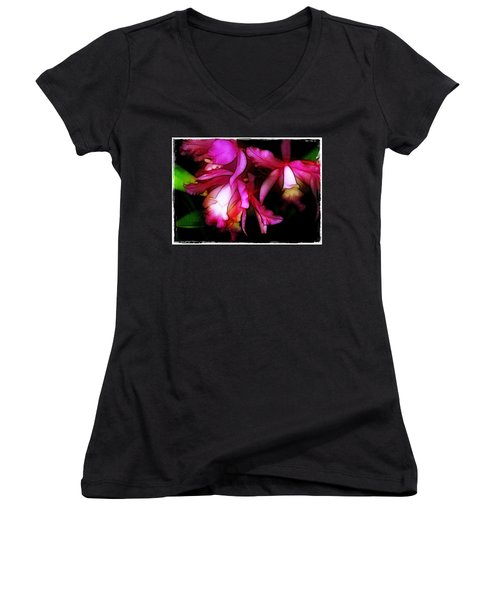 Cattleyas Women's V-Neck T-Shirt