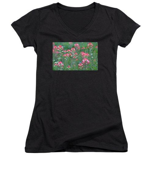 Celebration Of Paintbrushes Women's V-Neck T-Shirt