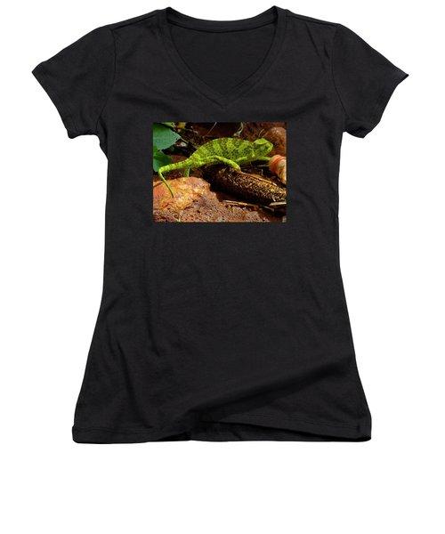 Chameleon Struts His Stuff Women's V-Neck T-Shirt