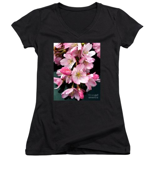 Cherry Blossoms Women's V-Neck