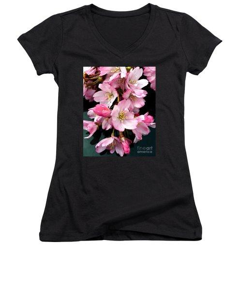 Cherry Blossoms Women's V-Neck