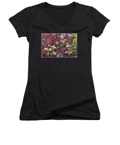 Cherry Tree And Pear Blossoms Women's V-Neck T-Shirt (Junior Cut) by Dora Sofia Caputo Photographic Art and Design