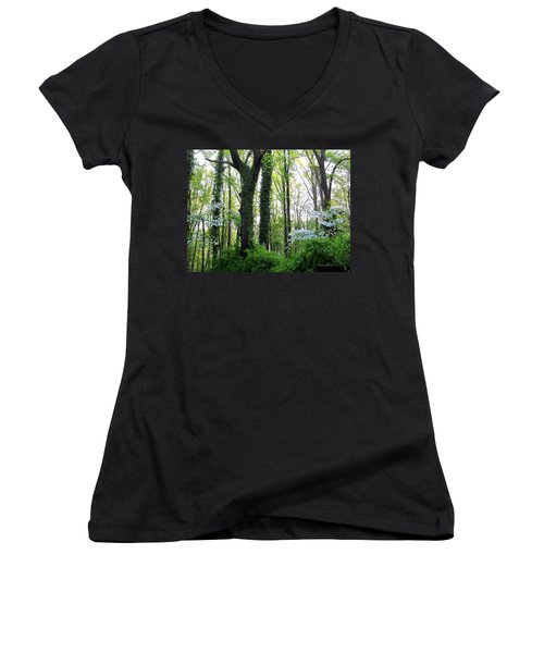 Chesapeake Oldgrowth Forest Women's V-Neck (Athletic Fit)