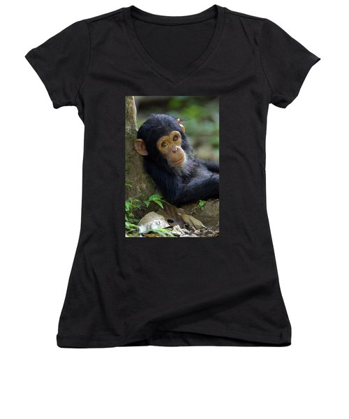 Chimpanzee Pan Troglodytes Baby Leaning Women's V-Neck