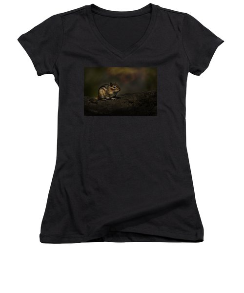 Women's V-Neck T-Shirt (Junior Cut) featuring the photograph Chipmunk On Rock by Michael Cummings
