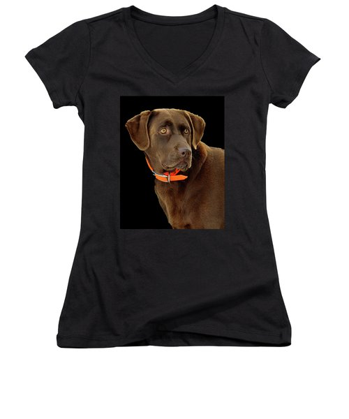 Chocolate Lab Women's V-Neck