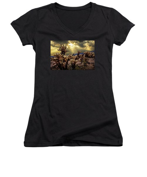 Women's V-Neck T-Shirt (Junior Cut) featuring the photograph Cholla Cactus Garden Bathed In Sunlight In Joshua Tree National Park by Randall Nyhof