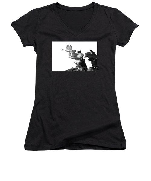 Christmas Cactus Women's V-Neck T-Shirt