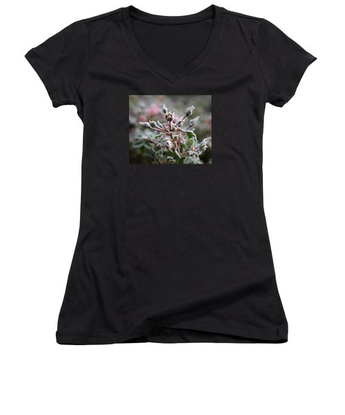 Women's V-Neck T-Shirt (Junior Cut) featuring the photograph Christmas Miniature Rosebuds by Katie Wing Vigil
