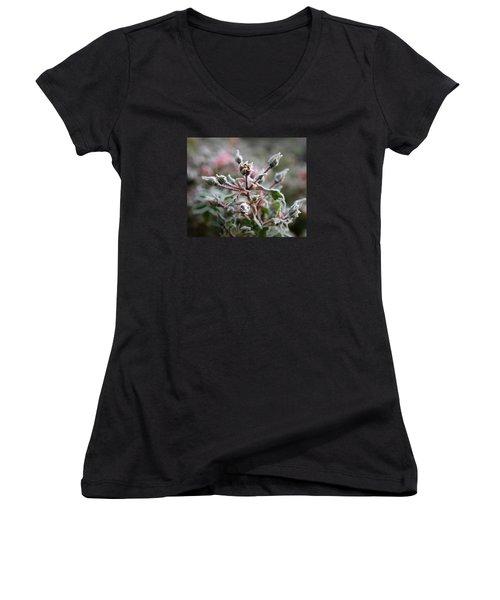 Christmas Miniature Rosebuds Women's V-Neck T-Shirt