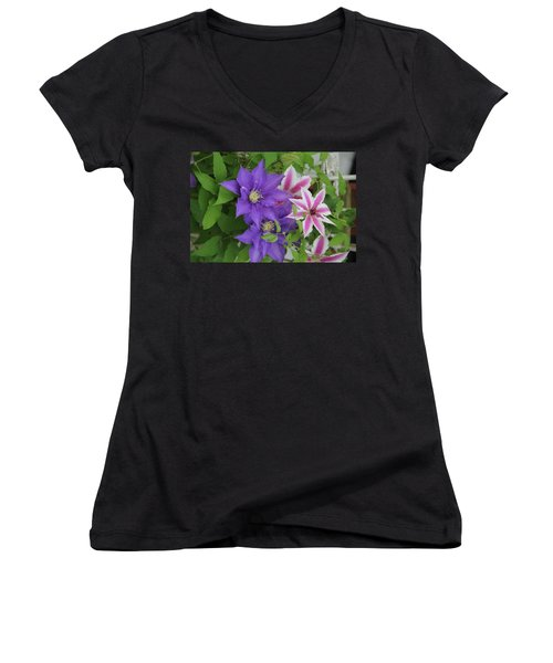 Clematis Purple And Pink White Women's V-Neck
