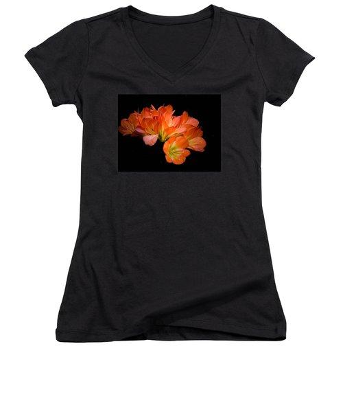 Clivia Flora Women's V-Neck T-Shirt (Junior Cut) by Bruce Pritchett