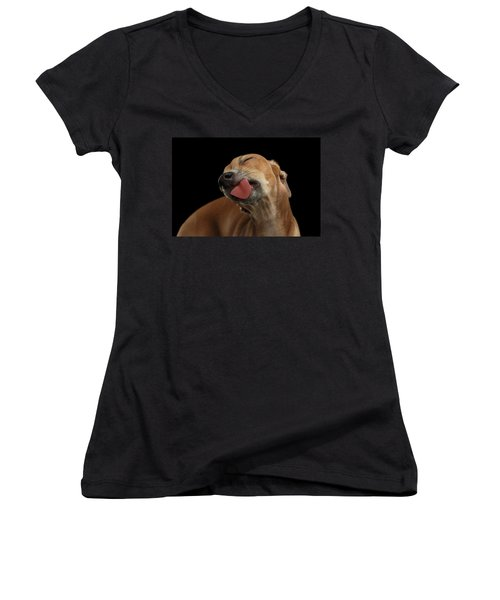 Closeup Cute Italian Greyhound Dog Licked With Pleasure Isolated Black Women's V-Neck (Athletic Fit)