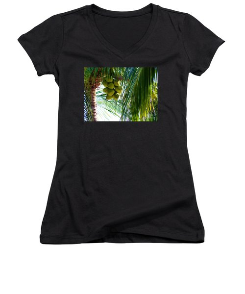 Coconuts Women's V-Neck