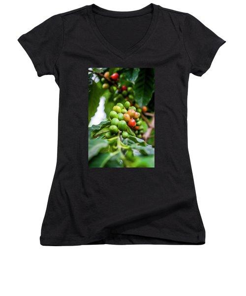 Coffee Plant Women's V-Neck