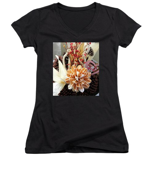 Collections Women's V-Neck T-Shirt (Junior Cut) by Lorna Maza