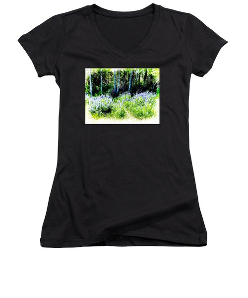 Colorado Apens And Flowers Women's V-Neck T-Shirt