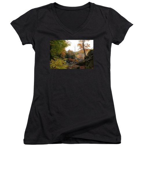 Women's V-Neck T-Shirt (Junior Cut) featuring the photograph Colors Along The Stream by Lois Lepisto