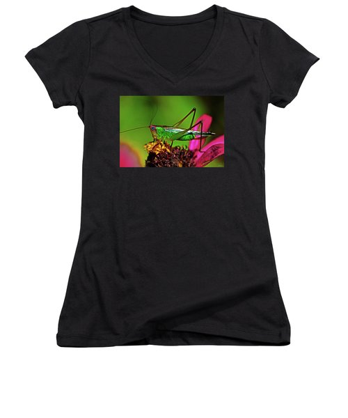Women's V-Neck T-Shirt (Junior Cut) featuring the photograph Colors Of Nature - Grasshopper On A Zinnia 001 by George Bostian