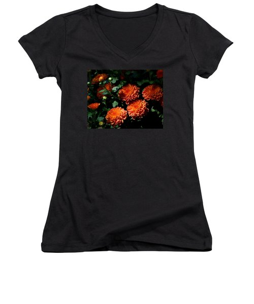Coming Out Of The Shadows Women's V-Neck