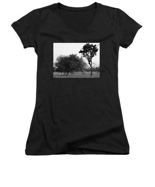 Communion Women's V-Neck T-Shirt (Junior Cut) by Beto Machado