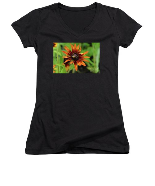 Cone Flower Women's V-Neck T-Shirt (Junior Cut)