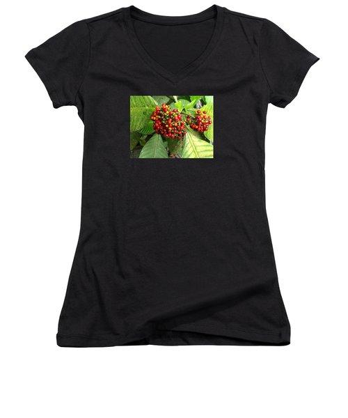 Costa Rican Berries Women's V-Neck T-Shirt (Junior Cut) by Angela Annas