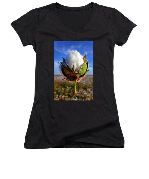 Women's V-Neck T-Shirt (Junior Cut) featuring the photograph Cotton Pickin' by Skip Hunt