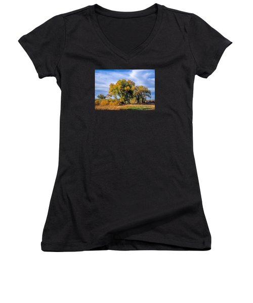 Cottonwood #1 Tree On Ranch Land In Colorado Fall Colors Women's V-Neck T-Shirt (Junior Cut) by John Brink
