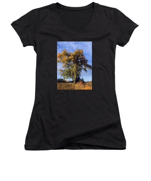 Cottonwood #3 Colorado Ranch Country In Fall Women's V-Neck T-Shirt (Junior Cut) by John Brink