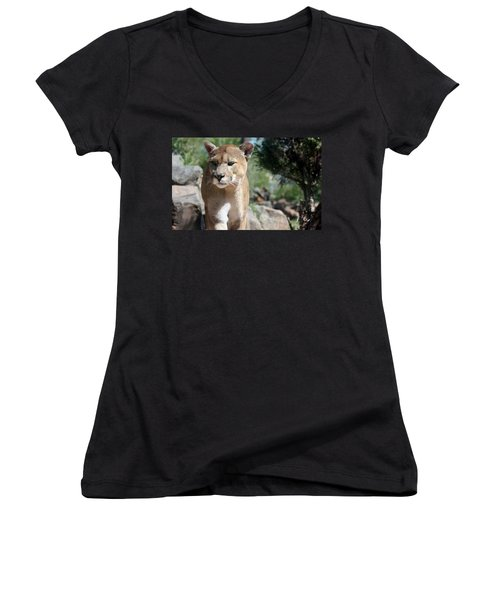 Cougar Women's V-Neck